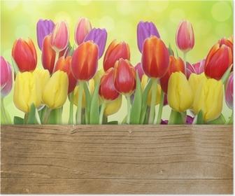 Poster Tulpen met houten paneel