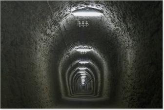 Poster Tunnel van het leven