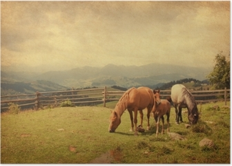 Two horses and foal in meadow. Paper texture. Poster