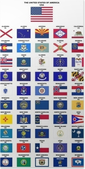USA : Flags of the States (with names and post codes) Poster