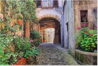 Poster Välvda kullerstensgata i en toskansk by, Italien