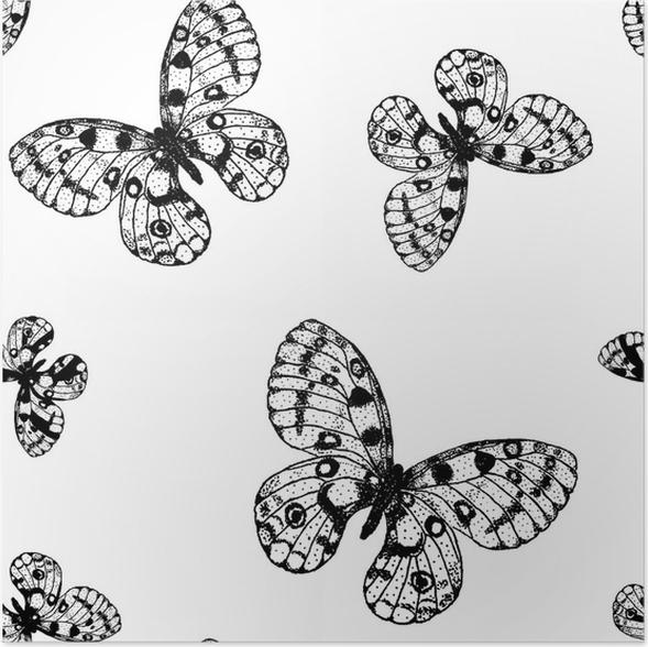 Póster Vector sin patrón de mariposa blanco y negro parnassius ...