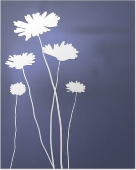 Poster Vector wit camomiles