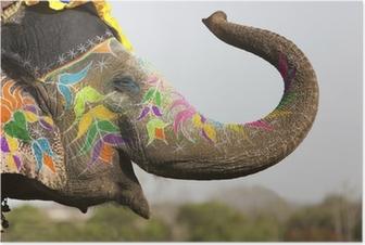 Poster Versierde olifant op de olifant festival in Jaipur