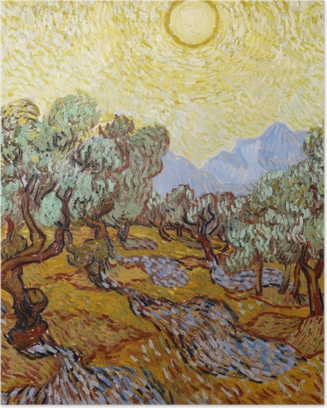 Poster Vincent van Gogh - Champ d'oliviers - Reproductions