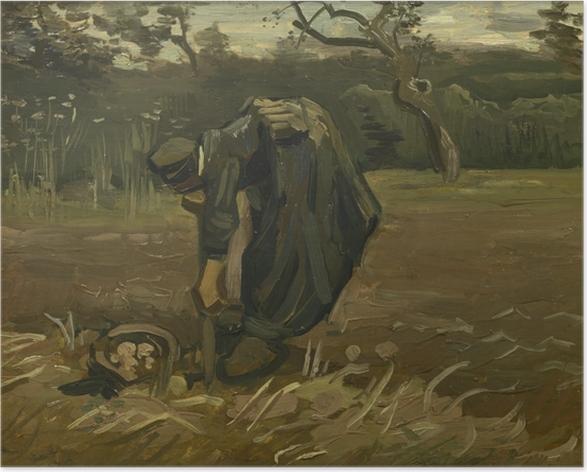 Poster Vincent van Gogh - Paysanne arrachant des pommes de terre - Reproductions
