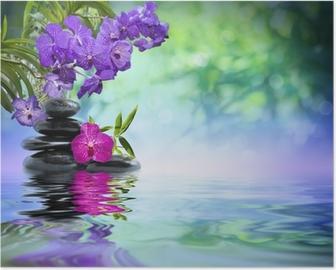 Poster Violette orchideeën, zwarte stenen op het water