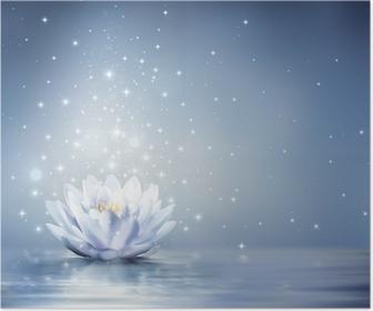 Poster Waterlelie lichtblauw op water - sprookjesachtige achtergrond