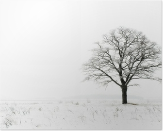 winter lonelyness Poster