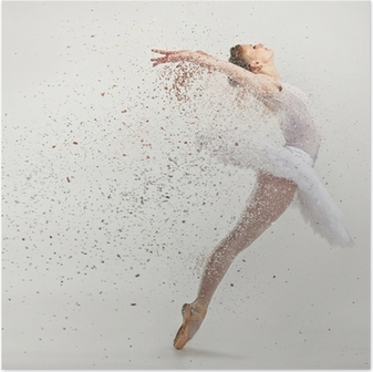 Young ballerina dancer in tutu performing on pointes Poster