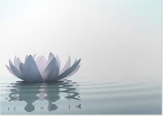 Zen flower loto in water Poster