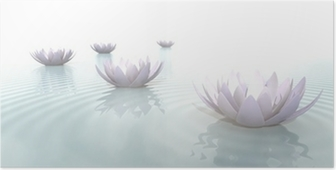 Zen Flowers on water in widescreen Poster