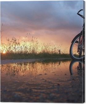Premium Bilder Fahrrad in der Pfütze