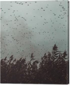 Premium Bilder Haufen Vögel der Nähe von Zuckerrohr in einem dunklen Himmel-Vintage-Stil schwarz und weiß fliegen