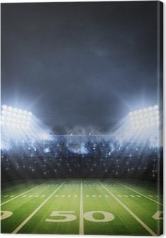 American soccer stadium Premium prints