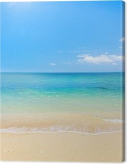 beach and tropical sea Premium prints