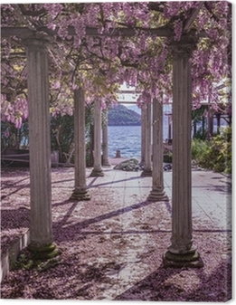 Beautiful front yard with pillars and wisteria flowers Premium prints