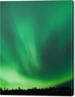 Boreal forest taiga Northern Lights substorm swirl Premium prints