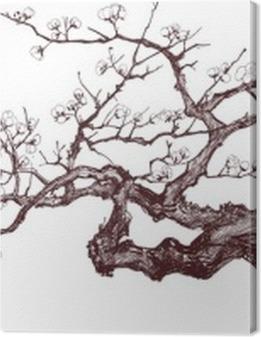 Cherry Tree Premium prints