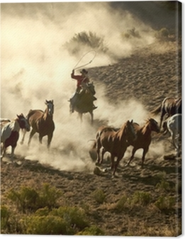Cowgirl and Cowboy galloping and roping wild horses Premium prints