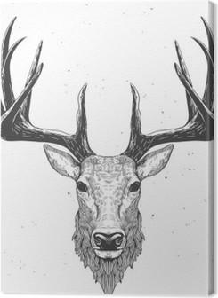 deer head on white Premium prints
