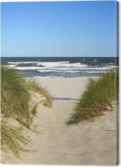 Der Weg zum Strand Premium prints