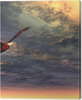 Eagle Premium prints