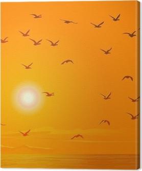 Flying birds against orange sunset. Premium prints