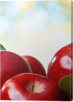 Fresh apples Premium prints