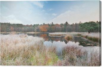 frosty morning on lake in autumn Premium prints