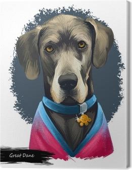 Great Dane, Deutsche Dogge, German Mastiff dog digital art illustration isolated on white background. Germany origin working, guardian dog. Pet hand drawn portrait. Graphic clip art design Premium prints