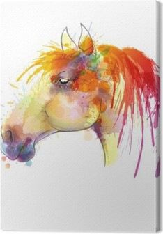 Horse head watercolor painting Premium prints