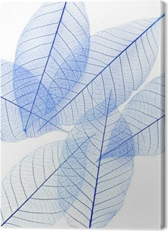 leaves Premium prints