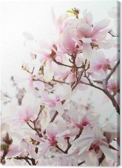 Magnolia tree Premium prints