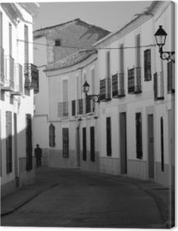 Mancha - Spagna Premium prints