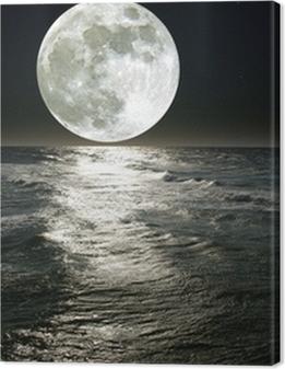 moon Premium prints