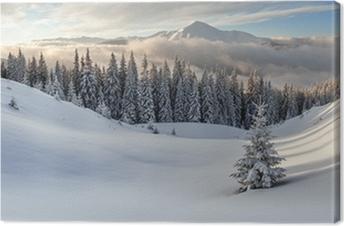 mountain Premium prints