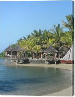 Paradise Cove Premium prints