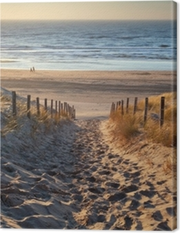 path to the sea at sunset Premium prints