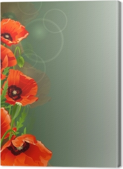 Poppy background Premium prints