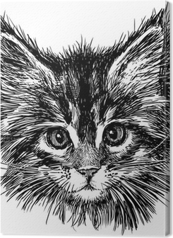 portrait of cat Premium prints