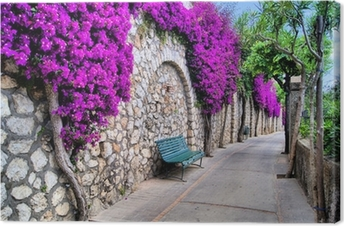 Small street against an old wall with purple flowers Premium prints