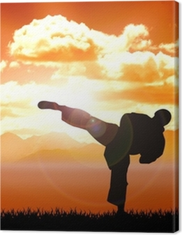 Stock illustration of Karate training Premium prints