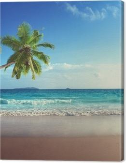 sunset on Seychelles beach Premium prints