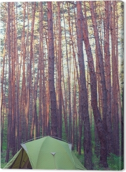 Tent in the forest Premium prints