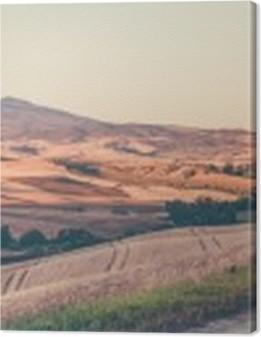 Vintage tuscan landscape Premium prints