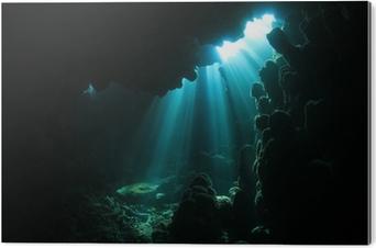 PVC Baskı Sualtı mağara ışığı