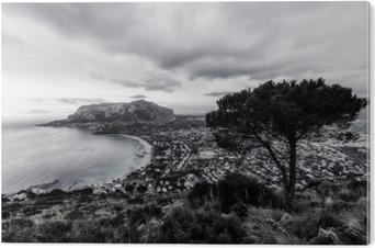 Black and White Mondello Bay on Sicily, Italy PVC Print