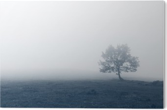 solitary tree with fog PVC Print