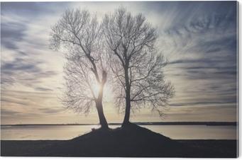 PVC Print Twin bomen silhouetten op een rivieroever bij zonsondergang, kleur getinte afbeelding.